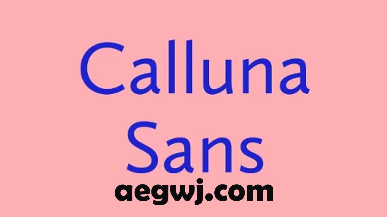aegwj水印模板 133 - 为您的设计提供免费高品质字体的网站