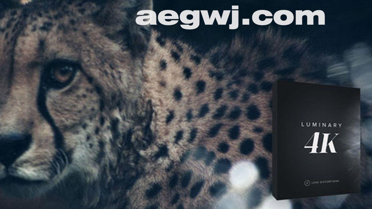 aegwj水印模板 156 - 视频素材资源下载75组制作柔美梦幻虚焦镜头光效4K分辨率特效合成