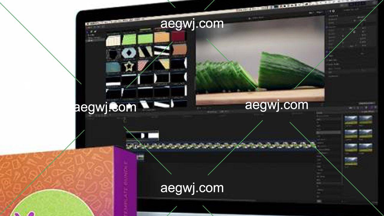 aegwj水印模板 163 - 121美食节目vlog宣传视频包装制作图形素材转场背景视频卡通动画字幕条