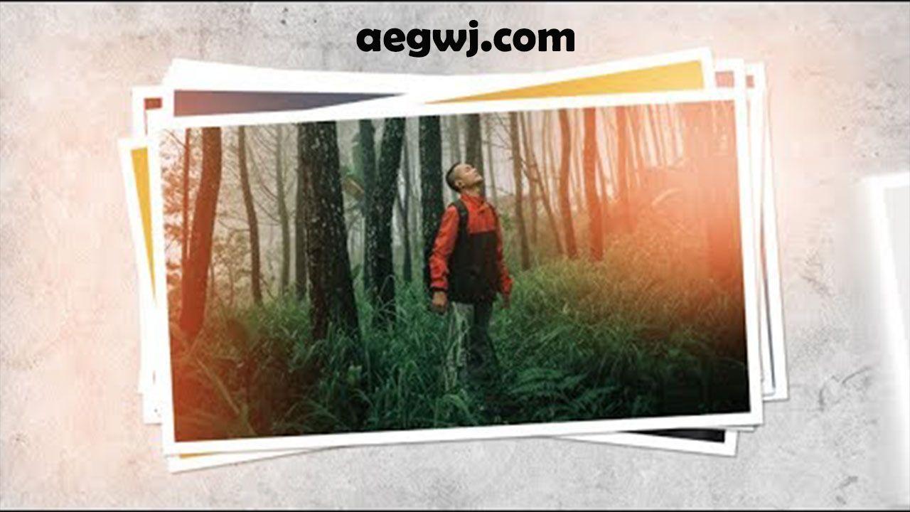 aegwj水印模板 35 - AE摄影标志介绍Photography Logo Intro in After Effects