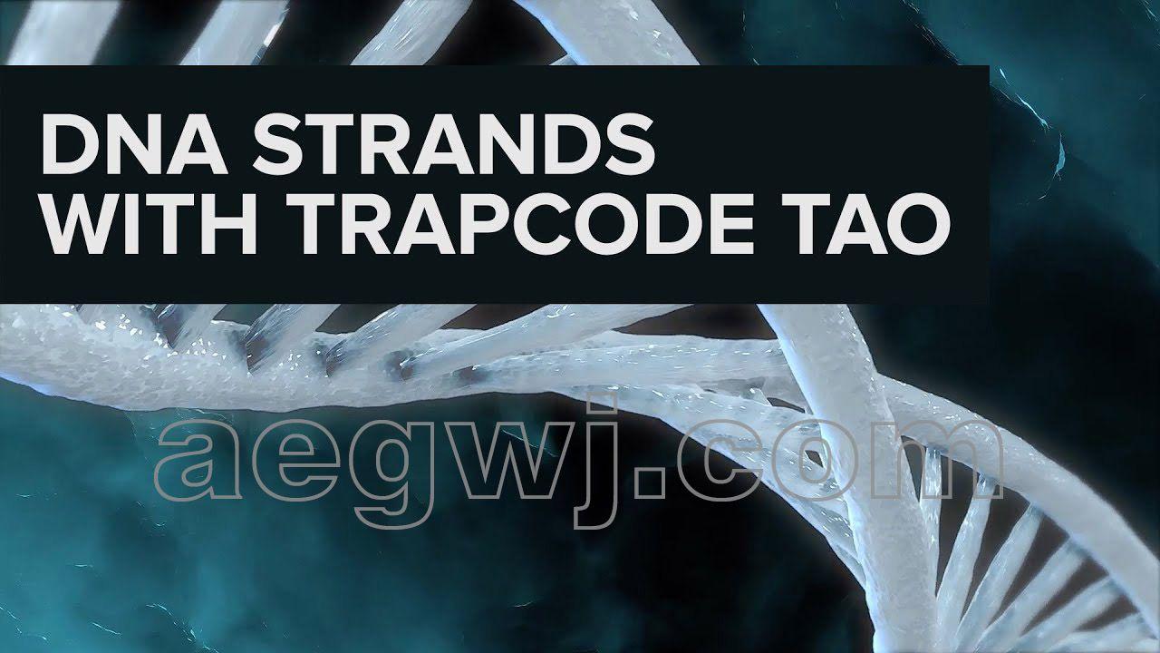 aegwj水印模板 73 - AE教程-使用trapcode tao制作DNA链