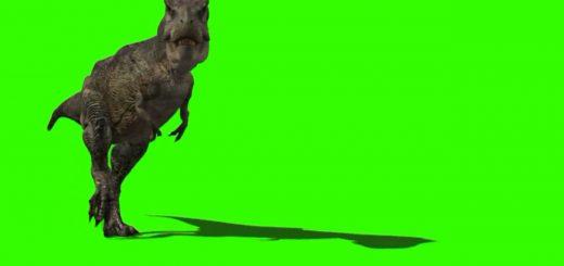 恐龙 .mp4 20190706 165840.686 520x245 - 绿屏动物类视频素材
