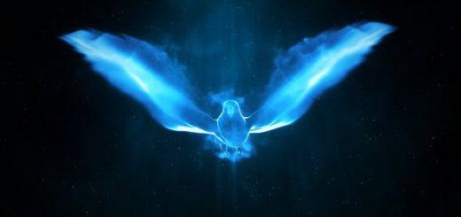 Magic Bird Logo 520x245 - AE模板-粒子飞鸟LOGO标志展示片头 Magic Bird Logo