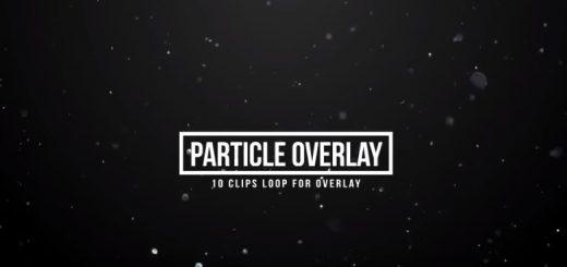 10组飞舞悬浮飘动闪烁粒子4K高清视频素材